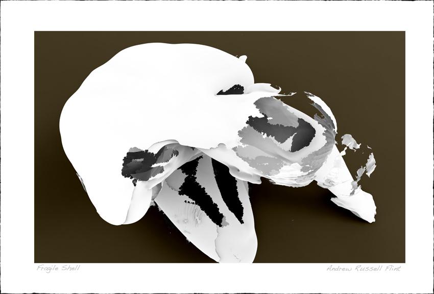 Fragile Shell